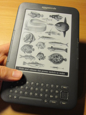 6 inch model of Amazon Kindle 3