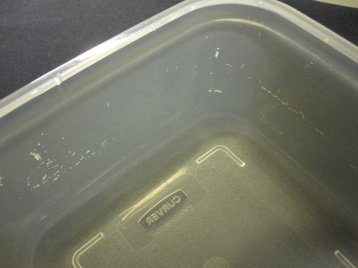 Damaged walls of the Curver plastic food container.